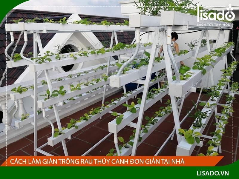 Cách làm giàn trồng rau thủy canh đơn giản tại nhà