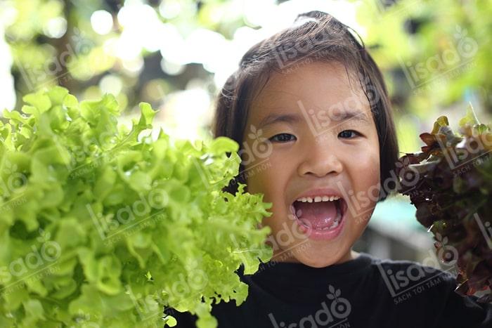 Mẹ bỉm sữa tự tay trồng rau tại nhà và lợi ích bất ngờ