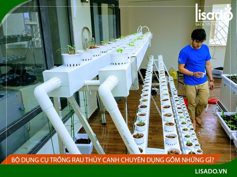 Bộ dụng cụ trồng rau thủy canh chuyên dụng gồm những gì?