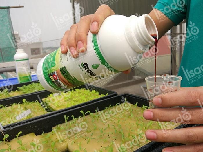 Mua dung dịch trồng rau thủy canh chất lượng tốt ở đâu?