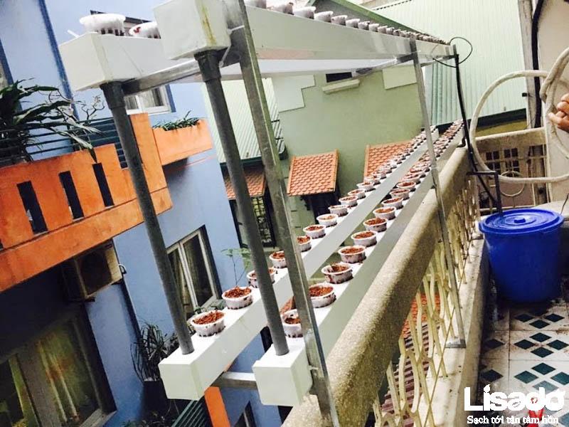 Lisado xây dựng giàn trồng hiện đại, tối ưu để khắc phục nhược điểm ban công quá nhỏ của gia đình chị Tú
