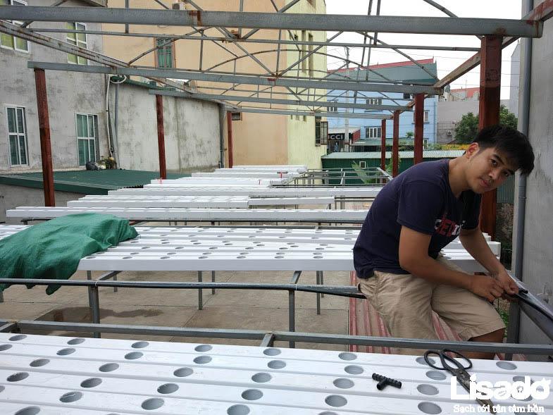 Các bước thực hiện dự án trồng rau thủy canh tại Thị trấn Hương Canh – Vĩnh phúc