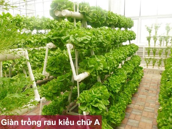 Giàn trồng rau kiểu chữ A