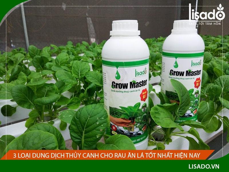 3 Loại dung dịch thủy canh cho rau ăn lá tốt nhất hiện nay