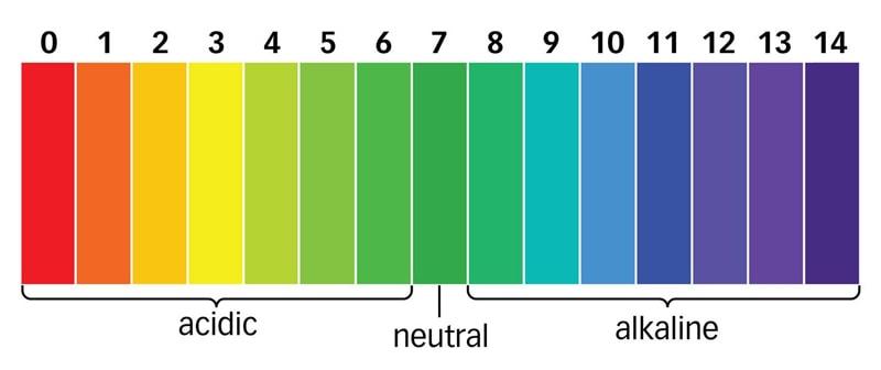Bảng màu pH