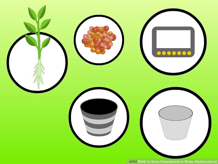 Chuẩn bị vật dụng để trồng cây