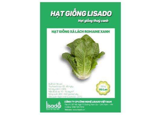 Hạt giống rau xà lách romaine xanh
