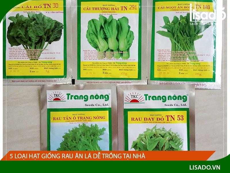 5 loại hạt giống rau ăn lá dễ trồng tại nhà, giàu dinh dưỡng