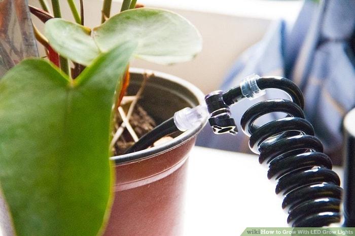 Điều chỉnh việc tưới nước khi cần