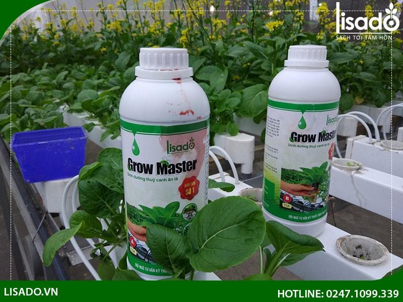 Bổ sung các dung dịch dinh dưỡng kịp thời cho hệ thống trồng rau thủy canh