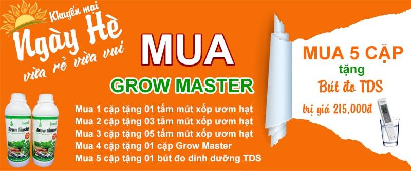 Dung dịch thuỷ canh Grow Master cặp 2 lít cho rau ăn lá | Tặng bút đo TDS 215,000đ