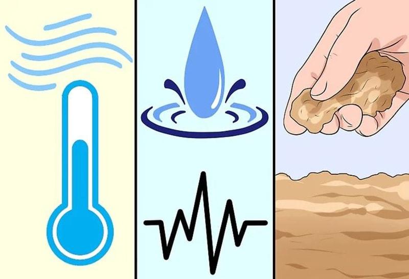 Kiểm soát môi trường một cách chặt chẽ