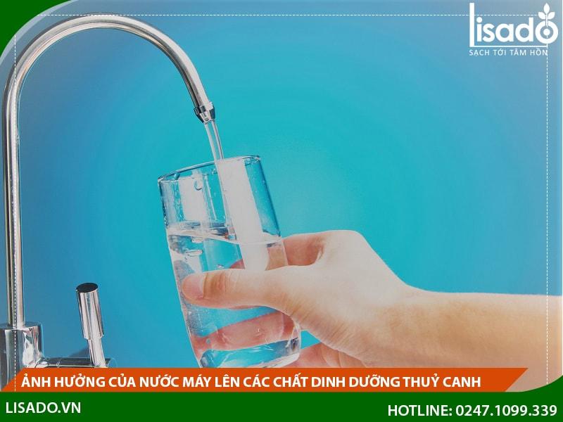 Ảnh hưởng của nước máy lên các chất dinh dưỡng thuỷ canh