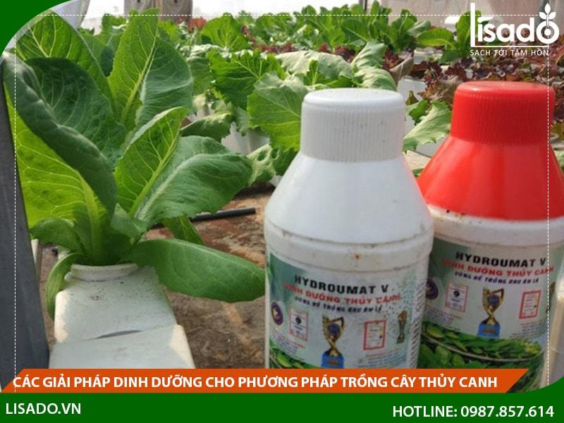 Các giải pháp dinh dưỡng cho phương pháp trồng cây thủy canh
