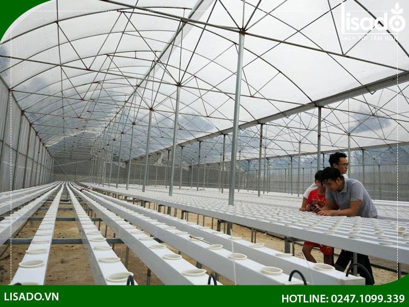 Khung giàn được thiết kế để tối ưu diện tích gieo trồng cũng như không gian đi lại