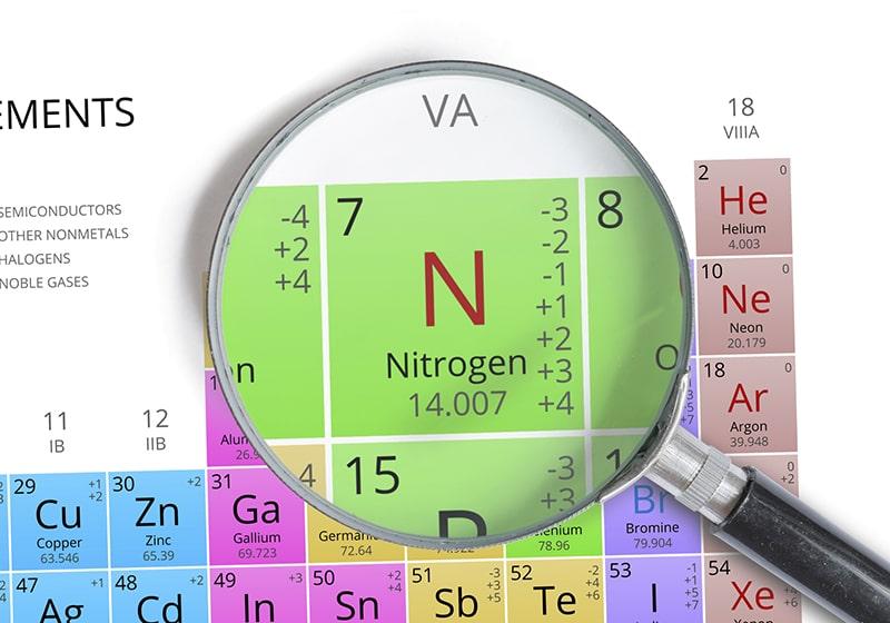 Nito là 1 nguyên tố đa lượng rất cần thiết cho sự phát triển của cây