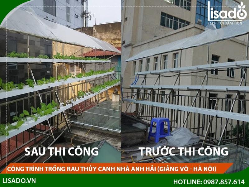 Công trình trồng rau thủy canh nhà anh Hải tại Giảng Võ - Hà Nội