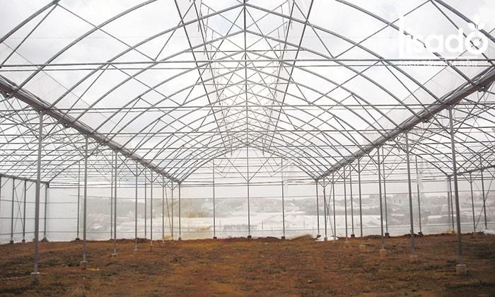 Khung nhà kính trồng dưa lưới