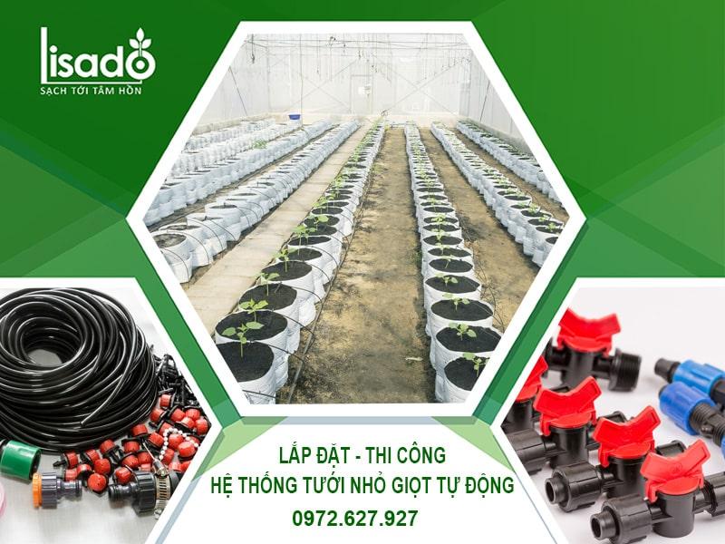 Lắp đặt - Thi công hệ thống tưới nhỏ giọt tự động Lisado