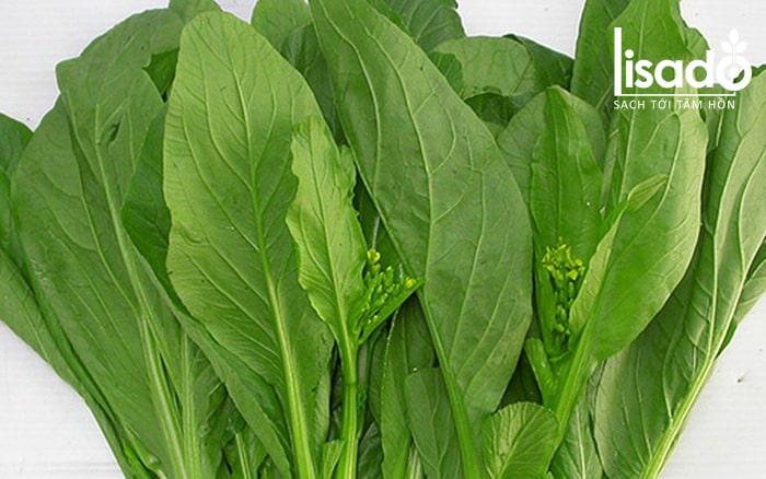 Quan sát màu sắc cuống lá và bẹ lá để nhận biết rau cải sạch