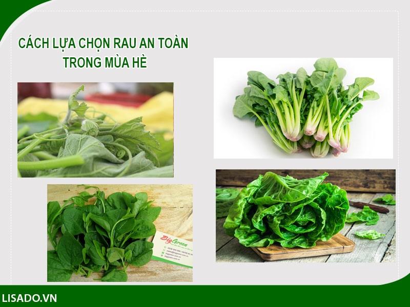 Mách mẹ cách lựa chọn 6 loại rau an toàn trong mùa hè