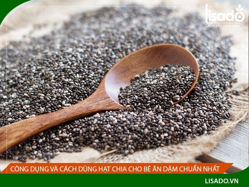 Công dụng và cách dùng hạt Chia cho bé ăn dặm chuẩn nhất