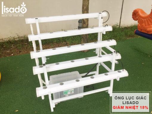 Giàn trồng rau thủy canh bậc thang GLS-06