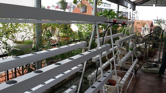 Hệ thống giàn trồng rau thủy canh hồi lưu nhà anh Tuyến