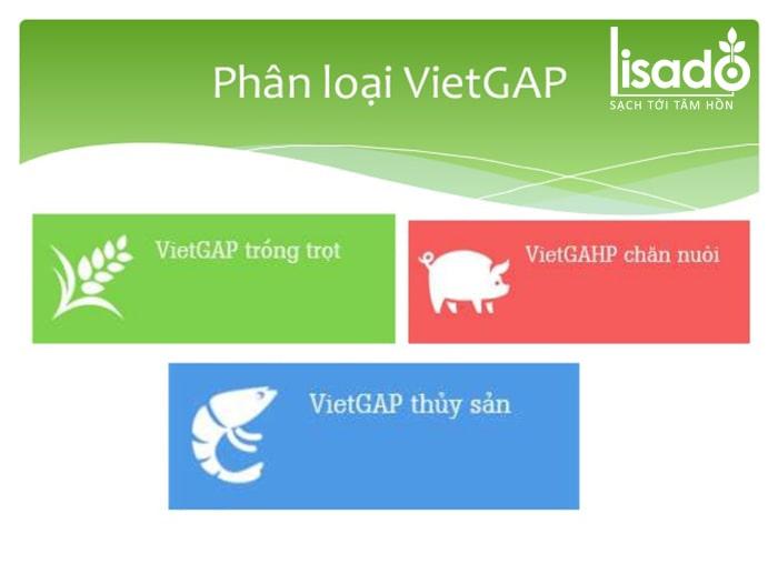 Phân loại các danh mục sản phẩm theo tiêu chuẩn Vietgap