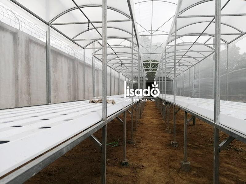 Dự án công trình thủy canh và nhà lưới 100m2 tại Hải Dương