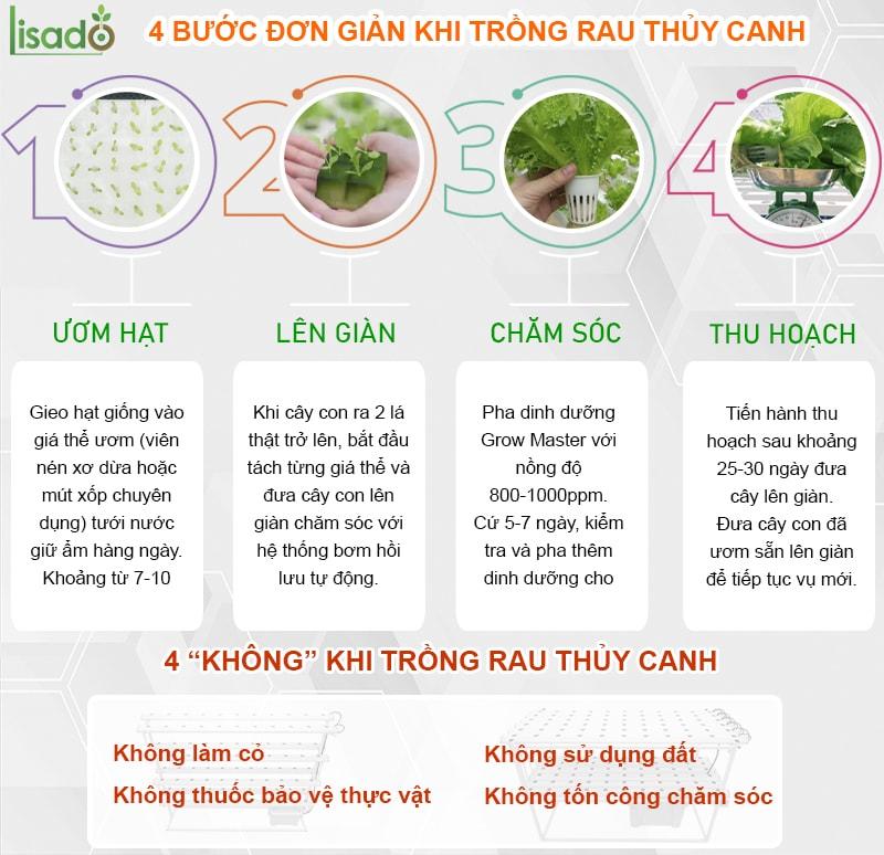 4 bước chăm sóc rau thủy canh tại nhà
