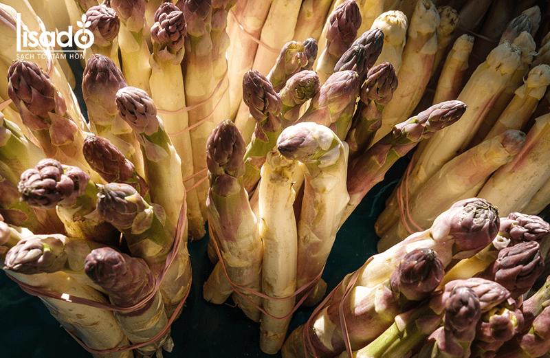 Giá trị dinh dưỡng và hiệu quả kinh tế khi trồng măng tây