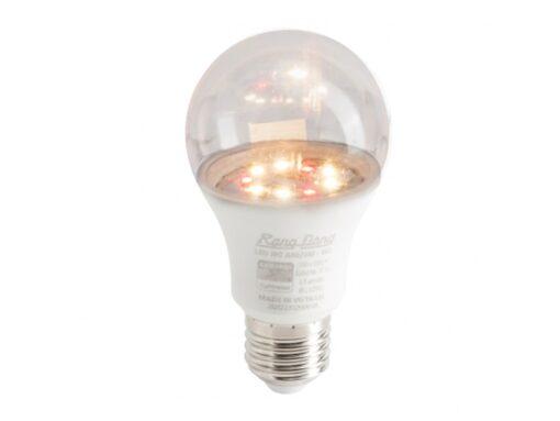 Đèn LED trồng hoa cúc 9W LED HC A60/9W 3000K - Rạng Đông