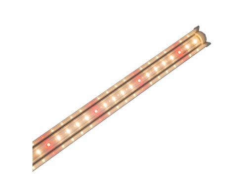 Đèn LED nuôi cấy mô NCM 120/16W WR - Rạng Đông